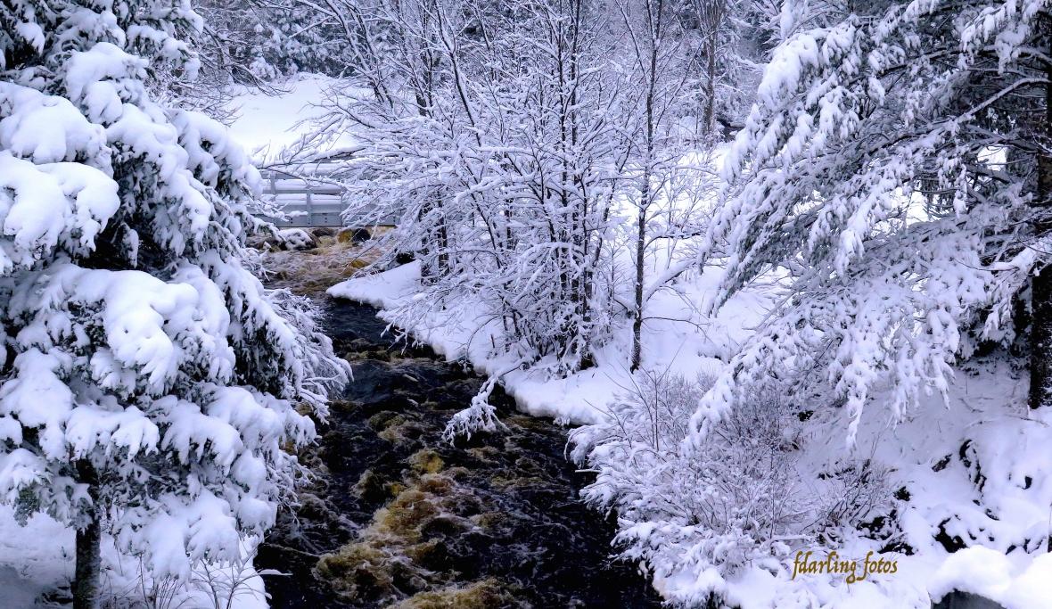 StPat_Snow_Stream_RstArea fd