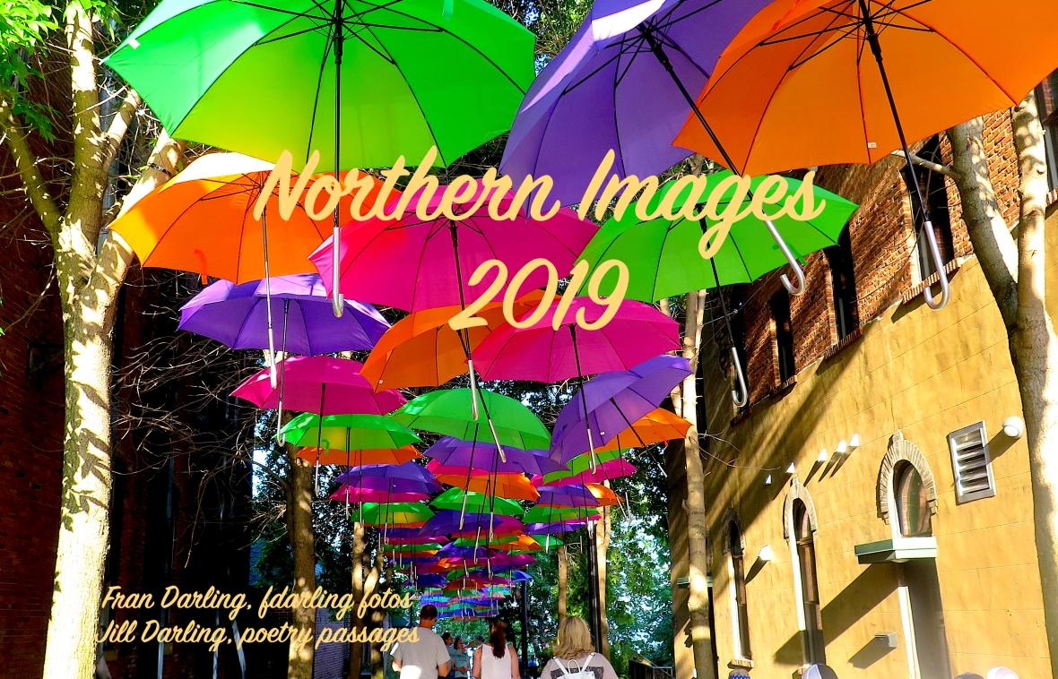 Cover-UmbrellaWalk_5393 NImagesCover